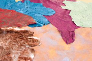 Catalogo pelli